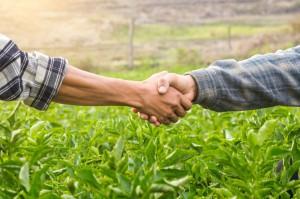 Rolnicy pomagają rolnikom
