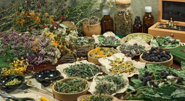 Festyn o ziołach zakończył sezon plenerowy Podlaskiego Muzeum Kultury Ludowej
