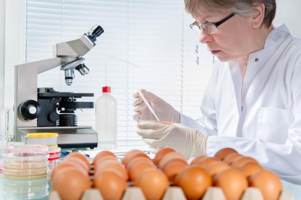 UE: Apel o lepsze ostrzeganie przed zagrożeniami związanymi z żywnością