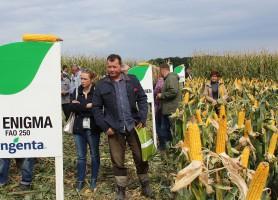 Efekty doświadczeń polowych w zakresie nowych odmian kukurydzy rolnicy mogli oglądać na poletkach doświadczalnych.