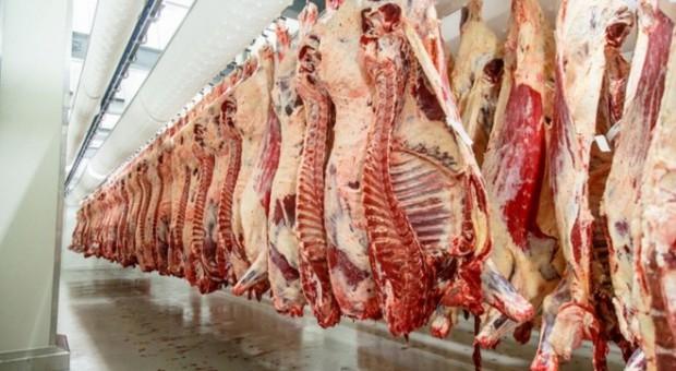 Białoruś rozpoczęła eksport wołowiny do Chin