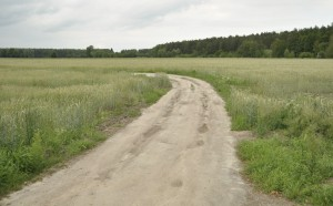 Podlaskie: 1,7 mln zł na remonty dróg dojazdowych do pól