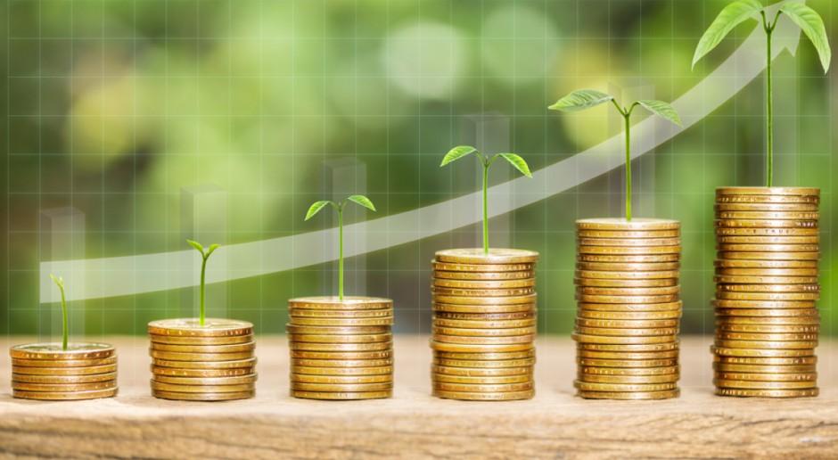 BGŻ BNP Paribas: Zboża siłą napędową do inwestycji