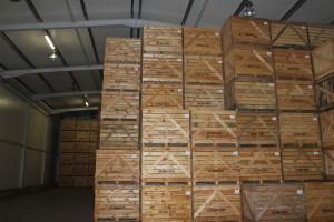 W zeszłym roku do użytku oddano nowoczesną przechowalnie mogącą pomieścić 7 tys, ton ziemniaków