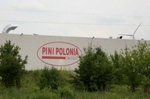 KRiR: Chińczycy wykupują polskie zakłady mięsne. Koncentracja spółek szkodzi rolnikom