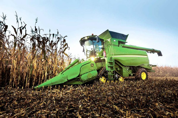 Czym ugryźć kukurydzę?
