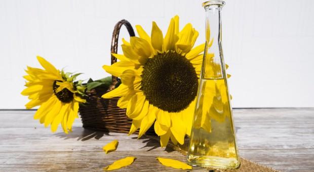 Rosja: Rekordowy eksport oleju słonecznikowego w sezonie 2016/2017