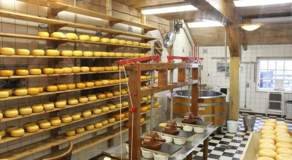 Dania: Rekordowy eksport produktów mleczarskich