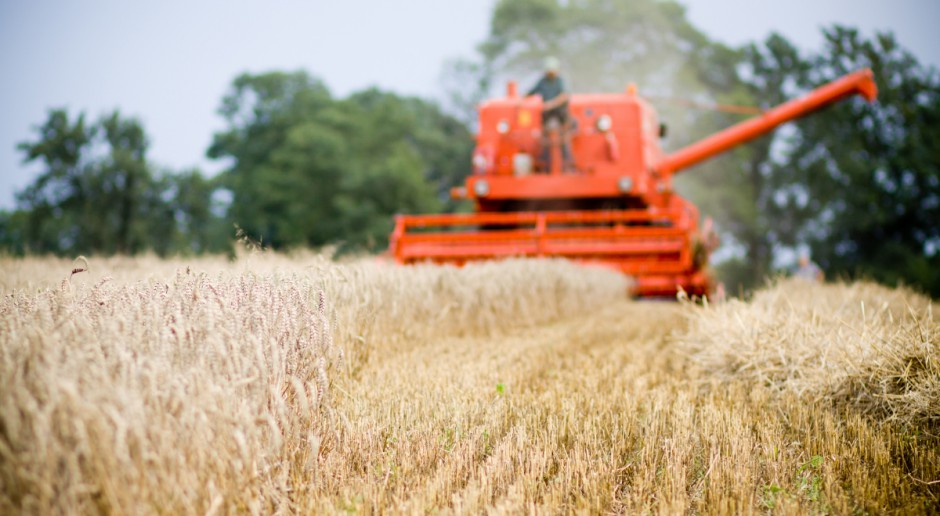 Premier: Rolnictwo ma strategiczną pozycje w planie na rzecz Odpowiedzialnego Rozwoju