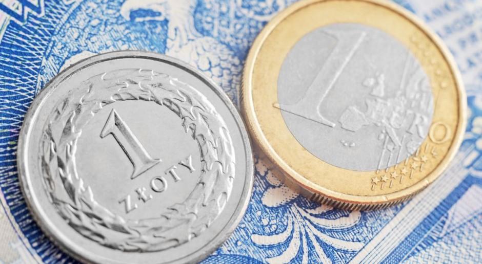 Euro do dopłat bezpośrednich po 4.3042, tańsze niż rok temu