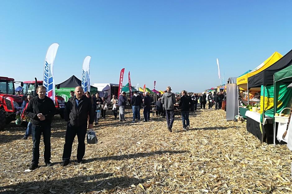 Na ściętym polu kukurydzianym, usytuowano część wystawową imprezy; Fot. Anna Kobus