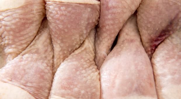 Węgry: Ogromny wzrost importu mięsa drobiowego - głównie z Polski