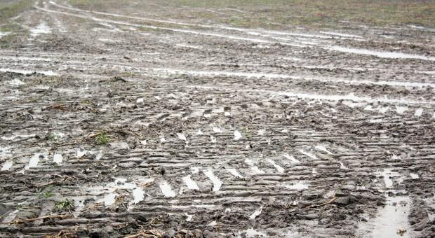 Nadmierne opady i ciężki sprzęt niszczą strukturę gleby na lata