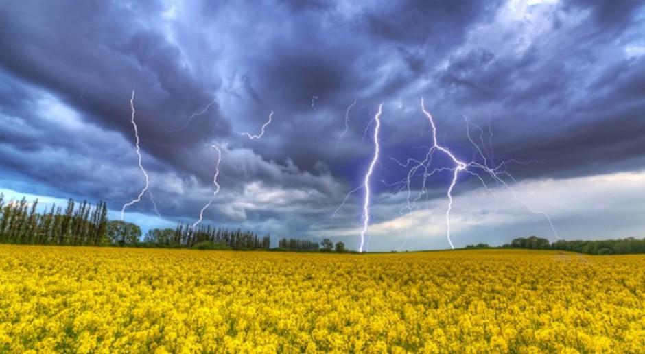 Co z biopaliwami z surowców rolnych - nie jest dobrze
