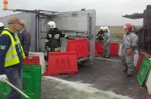 Nagonka strażaków zapędziła świnie do specjalnie zbudowanego korytarza