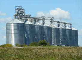Rosja: Pomoc dla producentów zbóż