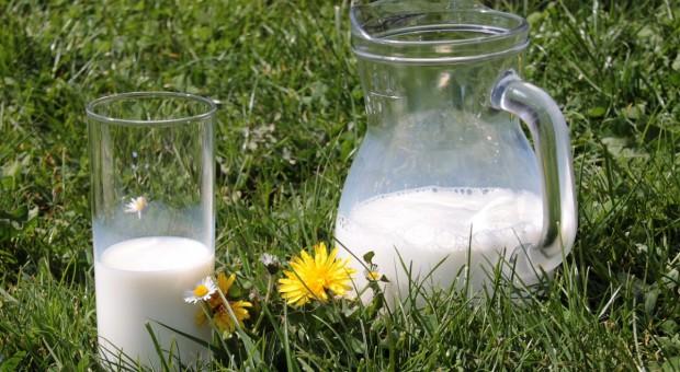 Jak zmieni się cena mleka najbliższych miesiącach?