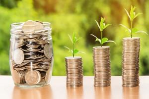 22 proc. wniosków o dopłaty do materiału siewnego – z Wielkopolski