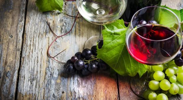 Młode włoskie wino trafiło na stoły