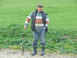 W Rumunii w 2016 r. w rolnictwie pracowała ¼ zatrudnionych