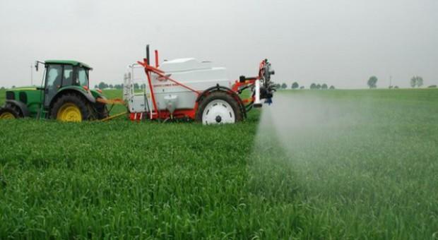 Uważaj na nielegalne pestycydy - zawsze traci rolnik