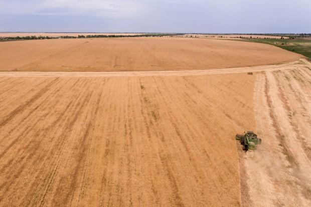Ukraina drugim światowym eksporterem zbóż