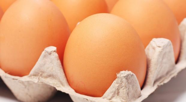 Ceny jaj zrównały się z cenami mięsa drobiowego