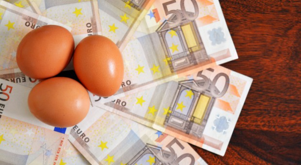 Jaja na unijnym rynku droższe od mięsa drobiowego