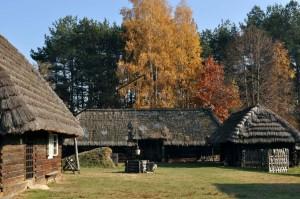 Kolbuszowa: W skansenie rekonstruują pamiątki dawnego leśnictwa