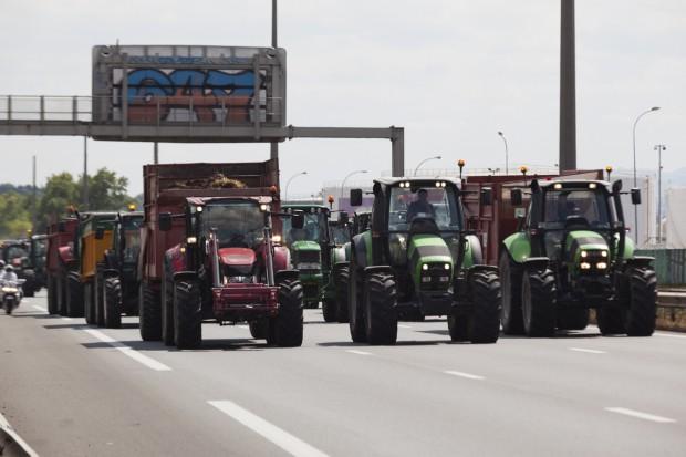 Protesty rolników we Francji - mają dość wilków