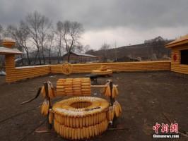 Fot. chinanews.com