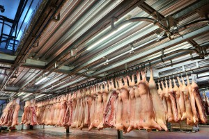 Ukraina chwali się wzrostem eksportu mięsa