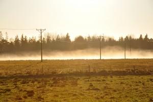 Senat za zakupem ziemi rolnej przez spółki przesyłowe bez zgody KOWR