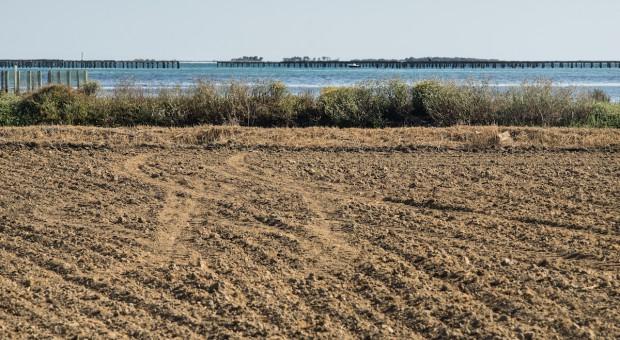 Hiszpania i Portugalia: Gminy apelują do rządów o pomoc w związku z suszą