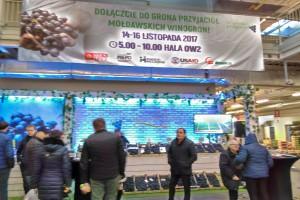 Mołdawskie winogrona trafią na polski rynek przez Bronisze