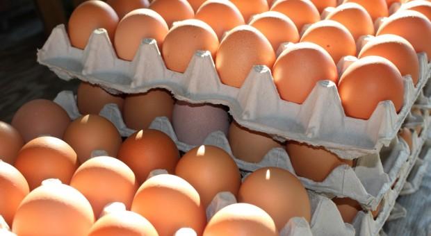 UE: Brak dostaw jaj i stale rosnące ceny