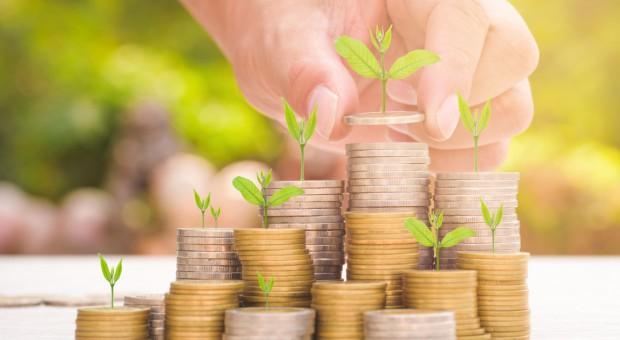ARiMR wypłaciła 7,25 mld zł zaliczek dopłat bezpośrednich
