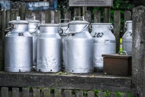 Ceny przetworów mlecznych znów spadły