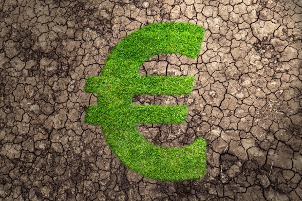 Rząd Portugalii przeznaczy ponad 40 mln euro na walkę z rekordową suszą