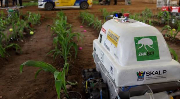 Żukbot - robot rolniczy skonstruowany przez studentów, który rozpoznaje chore rośliny i chwasty