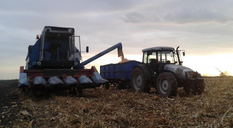 Żniwa kukurydziane 2017 - Opolszczyzna