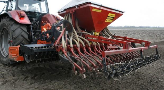 Ukraina: Zasiewy pszenicy ozimej na ukończeniu