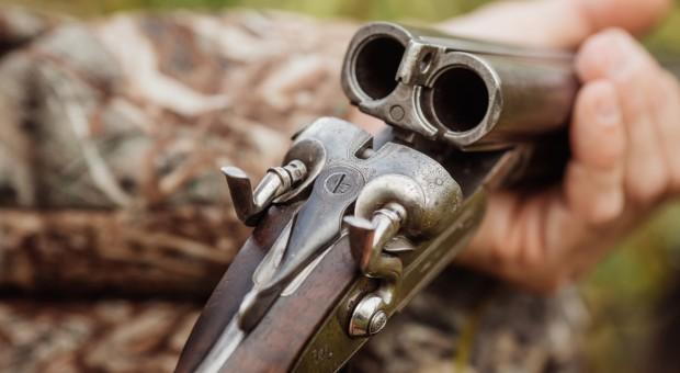 Czy wojskowi będą strzelali do dzików?