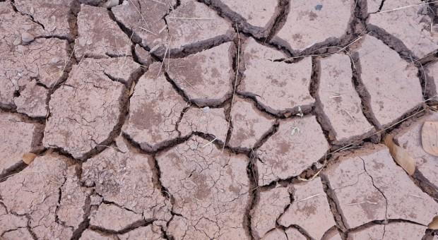 95 proc. terytorium Portugalii objęte ekstremalną suszą