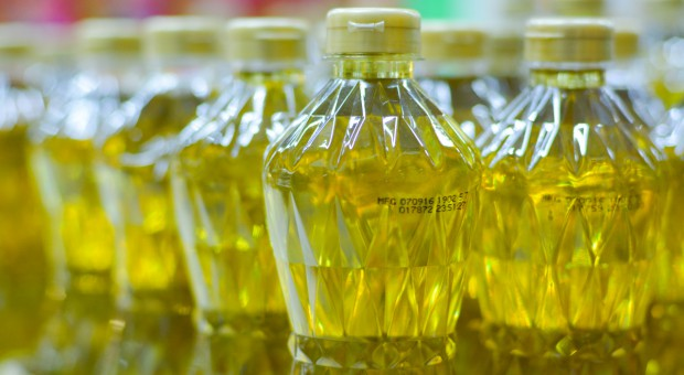 Ukraina: Ustalono limit eksportu oleju słonecznikowego w sezonie 2020/2021