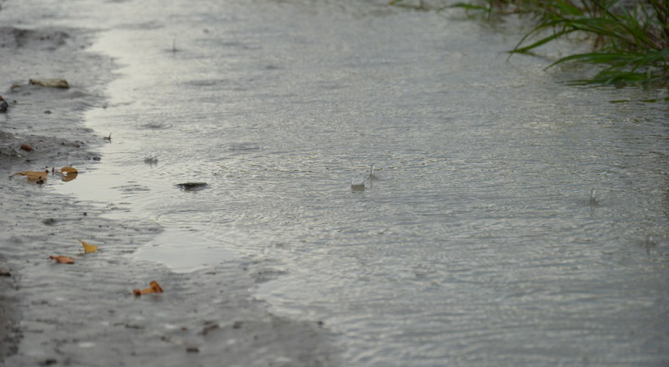 WHO: Po El Niño przyszła La Niña