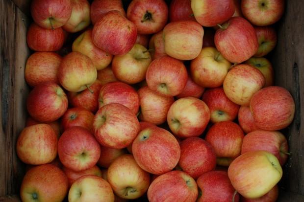 Sytuacja na krajowym rynku jabłek