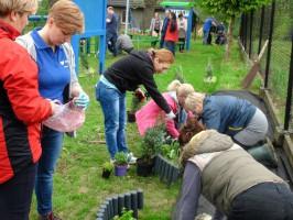Wspólne działania (np. sadzenie roślin, budowanie karminików, tablic, ławek, dendrofonu) pracowników De Heus i społeczności lokalnych