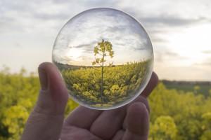 Senat za nowelizacją ustawy o biokomponentach i biopaliwach ciekłych