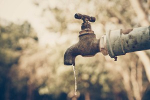 Wyszkowski: Polskie zasoby wodne porównywalne do egipskich